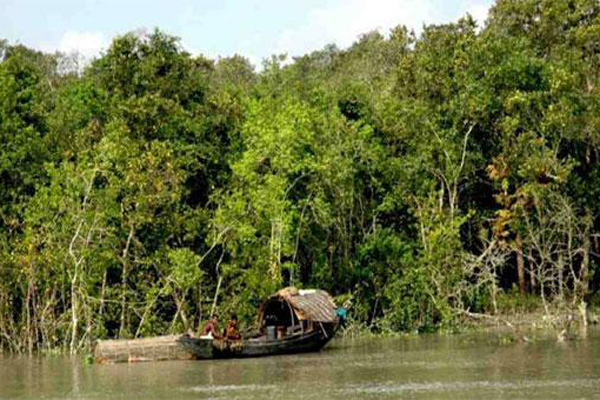 Tourist gatherings banned in Sundarbans